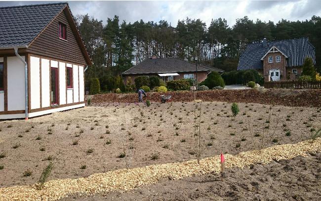 Gartengestaltung gusborn for Gartengestaltung neubau